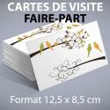 Cartes de visite 12,5 x 8,5 cm